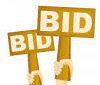 Auction Web Site